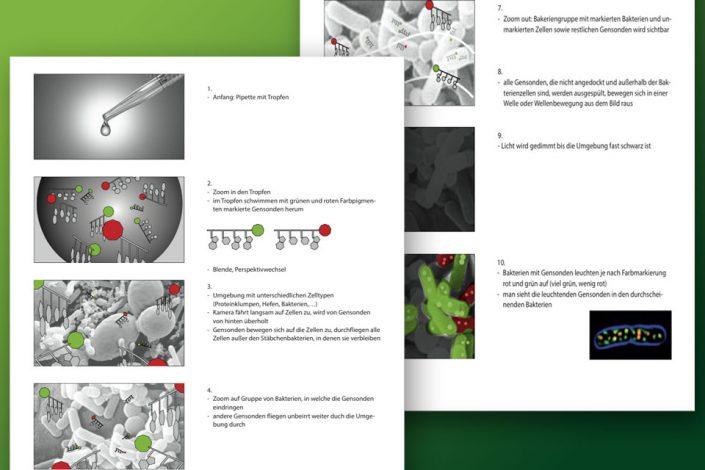 Storyboard für wiss. Animationsfilm